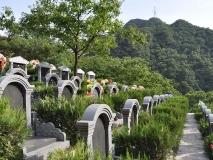 北京九公山公墓军纪念园96800传统墓